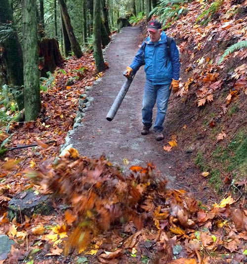 clearing off the leaves of the trail